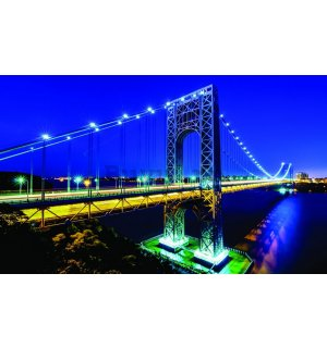 Fototapet: Manhattan Bridge - 184x254 cm