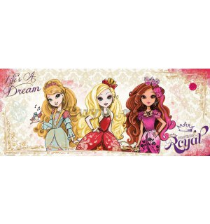 Fototapet: Mattel Ever After High (3) - 104x250 cm