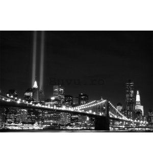 Fototapet: Brooklyn Bridge alb-negru (2) - 184x254 cm