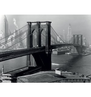 Tablou canvas - Time Life, Brooklyn Bridge, New York 1946