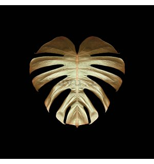 Tablou canvas - Alyson Fennell, Gold Deco Monstera