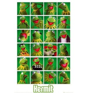 Poster - The Muppets kermit collage