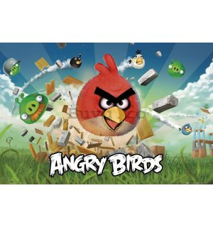 Poster - Angry Birds