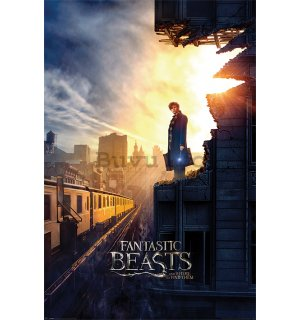 Poster - Fantastic Beasts and Where to Find Them (1)