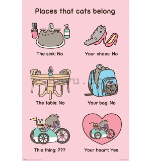 Poster - Pusheen (Places Cats Belong)