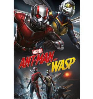 Poster - Ant-Man and the Wasp (Dynamic)