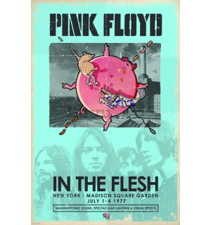 Poster - Pink Floyd (In The Flesh)