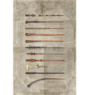Poster - Harry Potter (The Wand Chooses The Wizard)