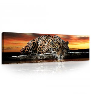 Tablou canvas: Jaguar - 145x45 cm