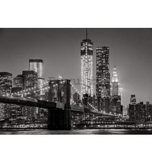 Fototapet vlies: Brooklyn Bridge (4) - 104x152,5 cm