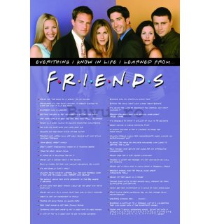 Poster - Friends (I Learned)