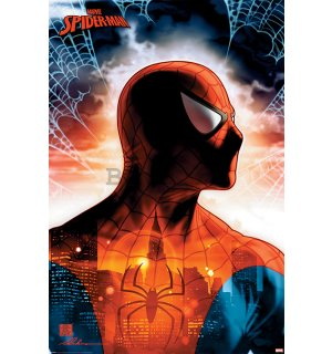 Poster - Spider-man (Protector of the City)