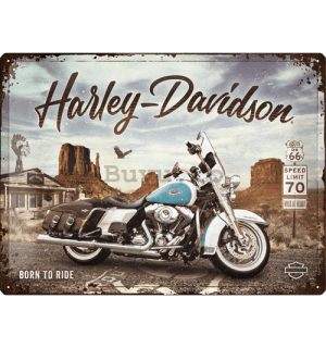 Placă metalică: Harley-Davidson (King of Route 66) - 40x30 cm