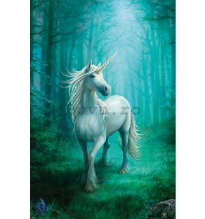 Poster - Forest Unicorn, Anne Stokes