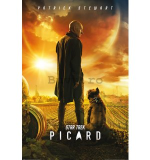 Poster - Star Trek Picard (Picard Number One)