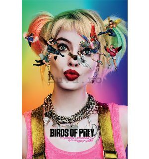 Poster - Birds Of Prey (Seeing Stars)
